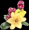 #5874. Картинки цветы на прозрачном фоне.  Фотографий: 9) Просмотров: 193...